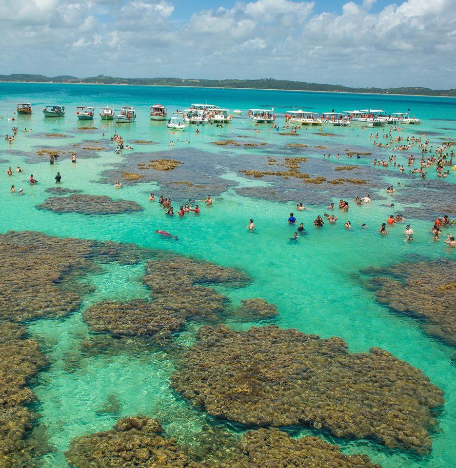 Visite as gal s de maragogi confira fotos das piscinas for Piscinas naturales maragogi